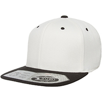 Fitted Classic Two-Tone Cap